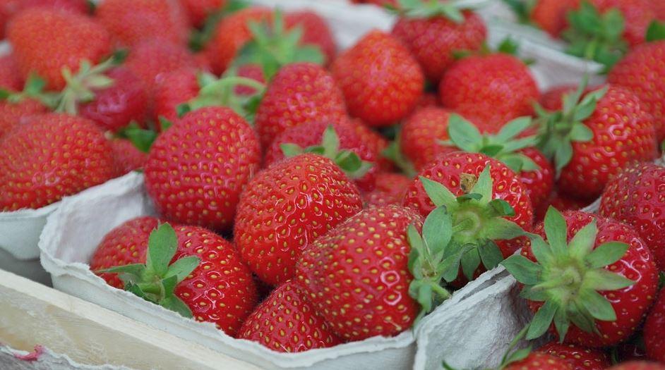 Нижегородская область планирует увеличить производство плодов иягод почти вдвое
