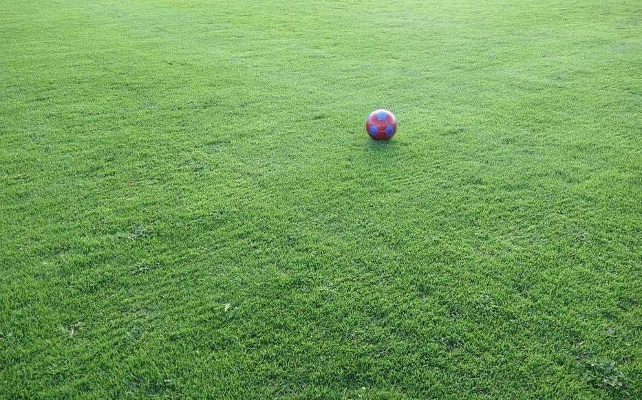 Мастер-класс по футболу для детей с синдромом Дауна прошел на стадионе «Северный» в Нижнем Новгороде