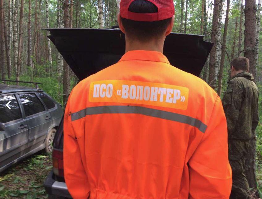 Сбор на поиск: 5-летняя девочка пропала в Вознесенском районе