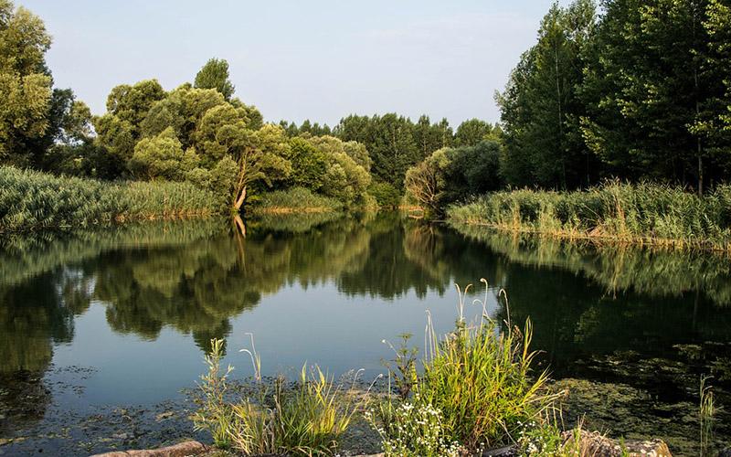 В Нижегородской области очистят три реки