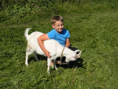 Школьник из нижегородского села выучился на пастуха по Интернету