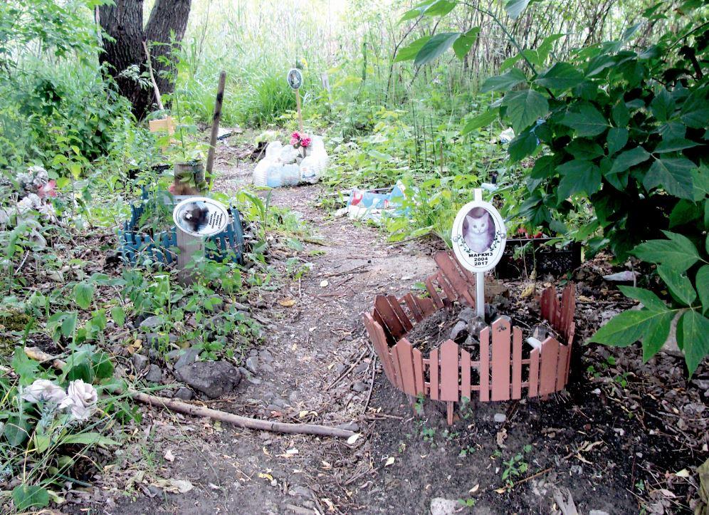 Где нижегородцы могут похоронить своих питомцев