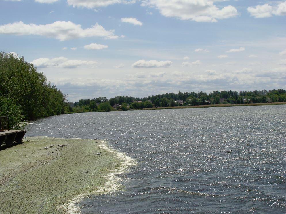 Состояние Вадского озера заставляет экологов бить тревогу