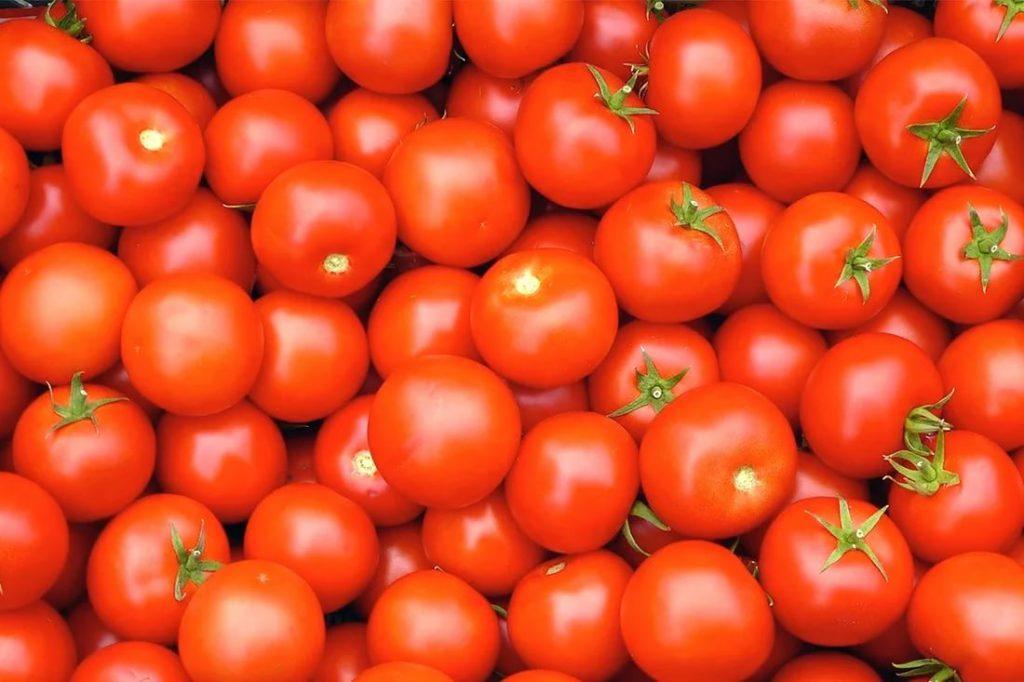 Август: внимание томатам