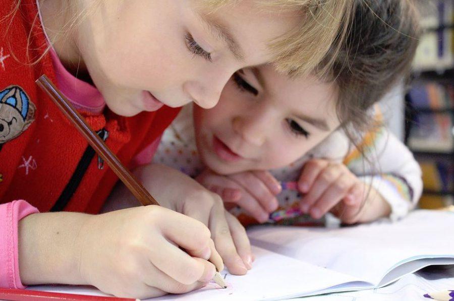 Нижегородские эксперты прокомментировали намерение частного инвестора вложить средства в строительство крупнейшего образовательного центра в Нижегородской области