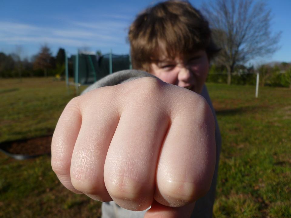 Воспитание или генетика? Почему дети ведут себя агрессивно