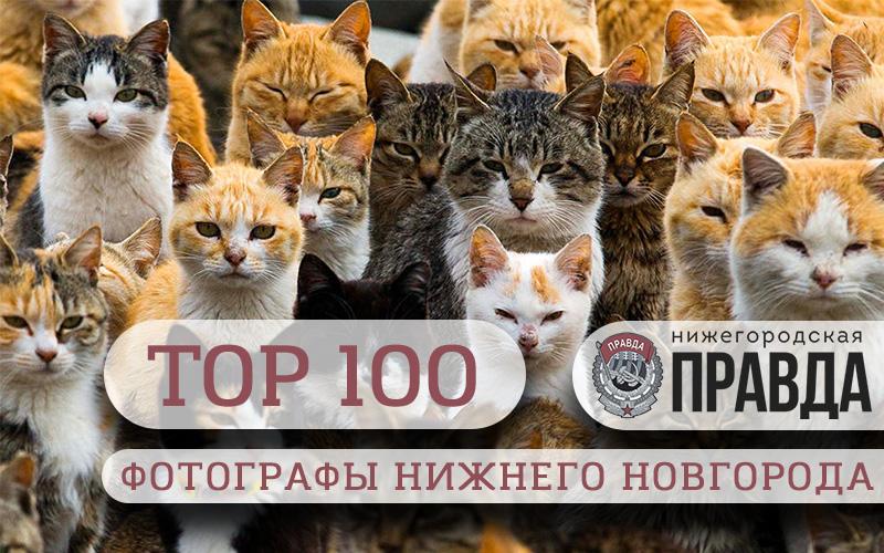 TOP-100. Самые интересные фотографы Нижнего Новгорода