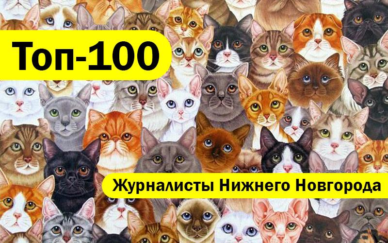 Топ-100 Лучшие журналисты Нижнего Новгорода