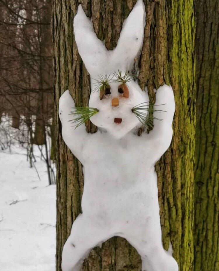 Дети украсили деревья снежными фигурами в парке