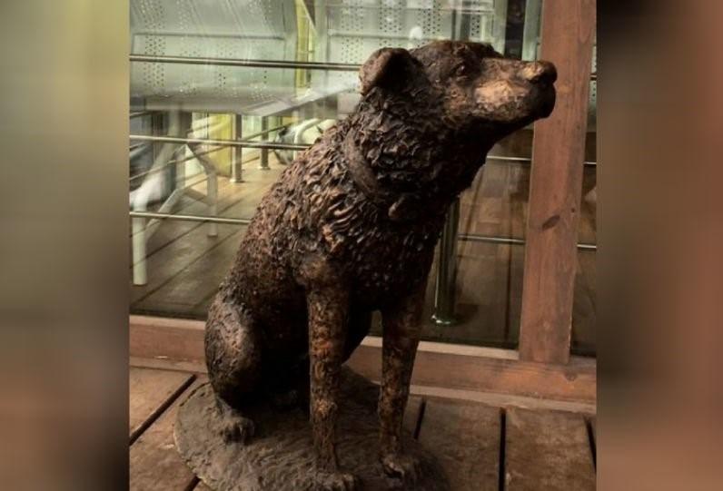 В Нижнем Новгороде установили памятник бездомному псу