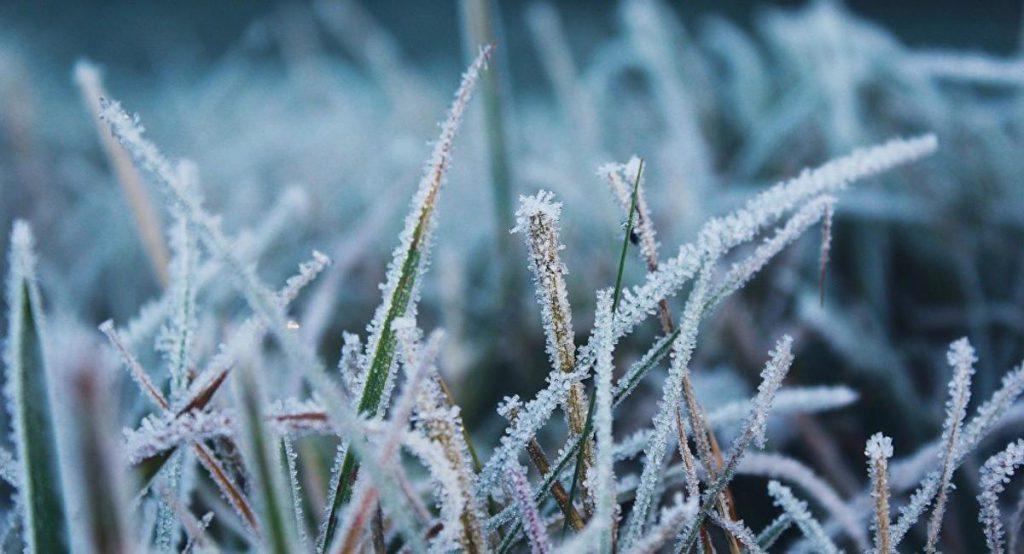 Заморозки ожидаются в Нижегородской области