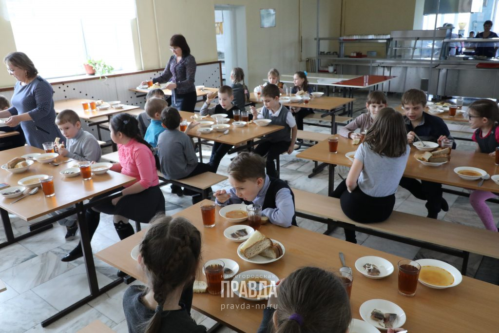 ЭТП «ТОРГИ 223» поможет пяти нижегородским школам найти подрядчика для организации горячего питания