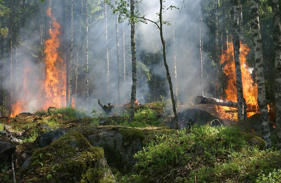 Высокая пожароопасность сохранится в Нижегородской области до конца недели