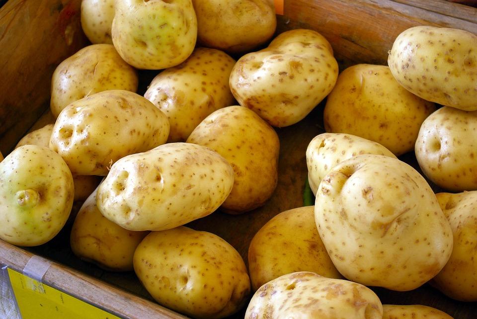 Правда или ложь. Картофель подорожает в два раза