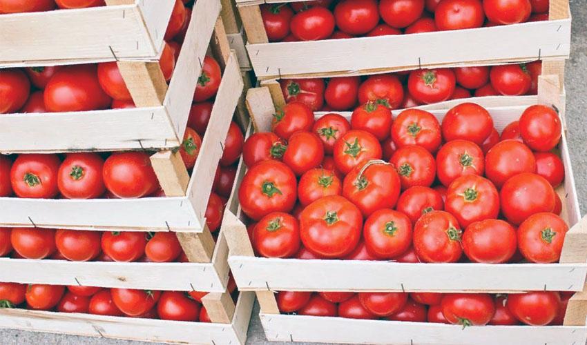 В Нижнем Новгороде любитель помидоров ограбил ресторан