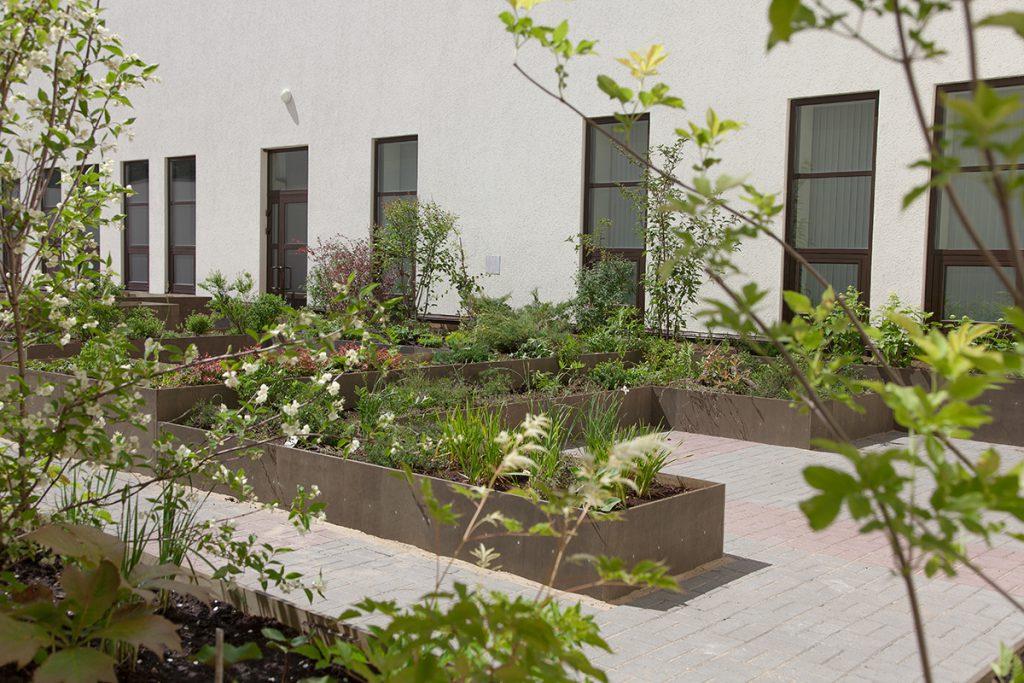 Ботанический сад, звуковые инсталляции и вечная память. В Нижегородском крематории отношение к смерти изменят современные художники