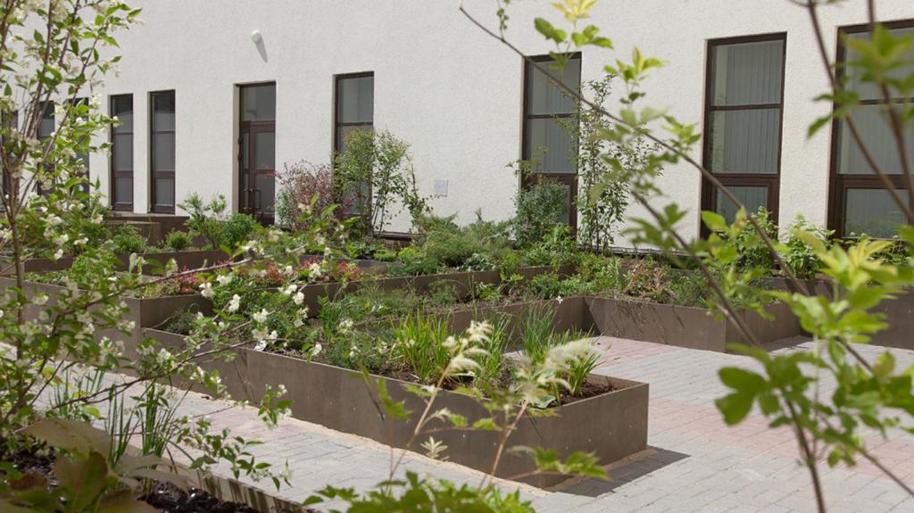 Сады против страха смерти. В нижегородском крематории открылся новый арт-объект