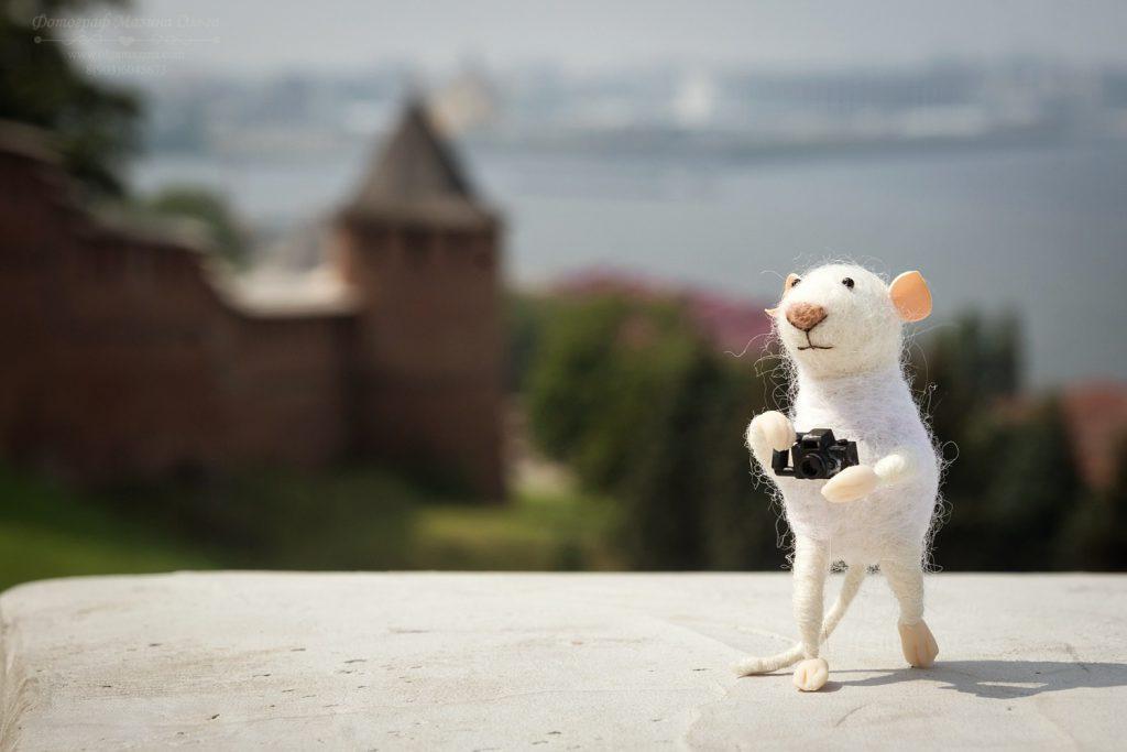 Фото дня: мышка-путешественница прогулялась по Чкаловской лестнице и Кремлю