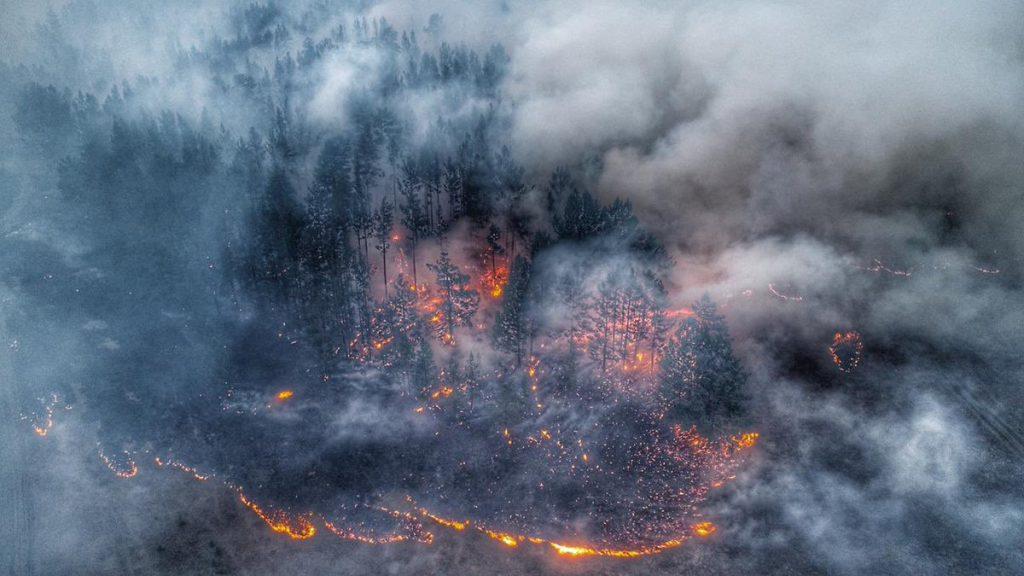 Пожарная тревога. Кто на самом деле виноват в том, что горит Сибирь