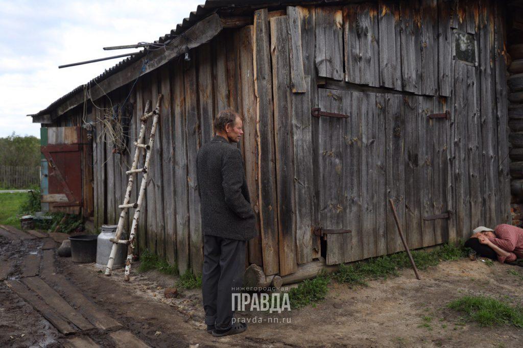 зарина авгонова
