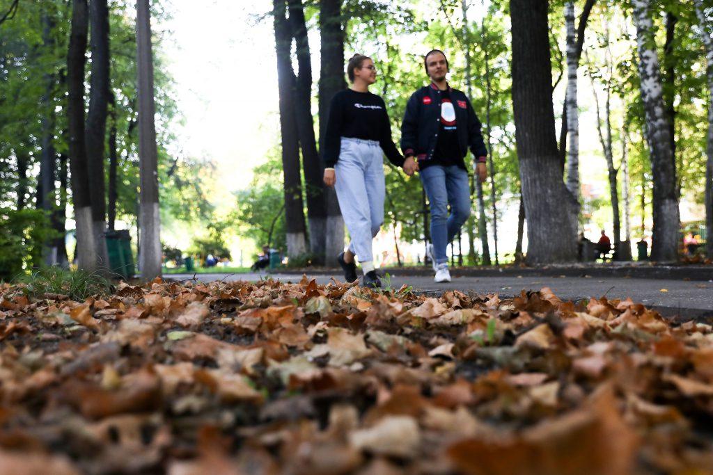 Как долго продлится бабье лето в Нижегородской области: прогнозы синоптиков