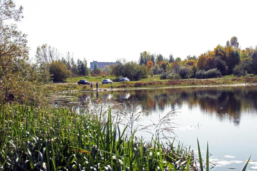 Волжской пойме в Нижнем Новгороде вернули статус зелёной зоны