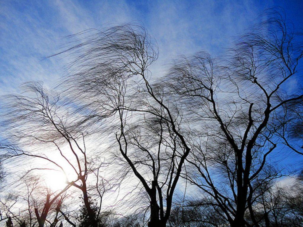 Ветер усилится в Нижегородской области