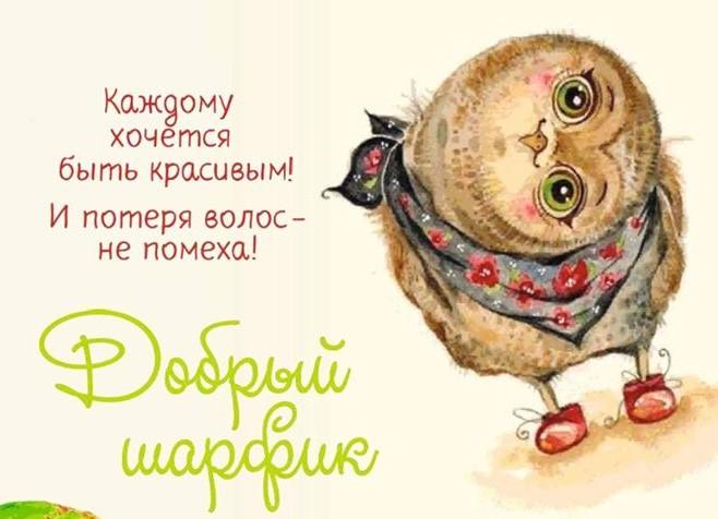 Нижегородцы смогут сделать свой вклад в благотворительной акции «Добрый шарфик»