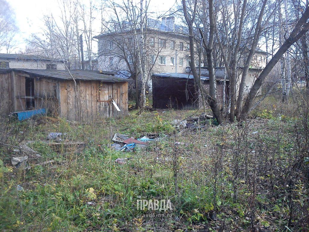 Жители Богородска просят администрацию города навести порядок возле своих домов