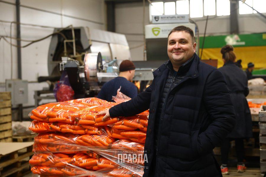 Сергей Щавлев морковь овощебаза