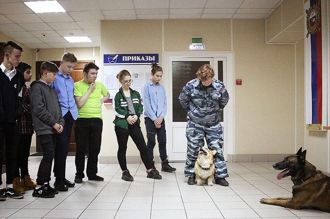 Корги-полицейский из Нижнего Новгорода встретился с воспитанниками детских домов