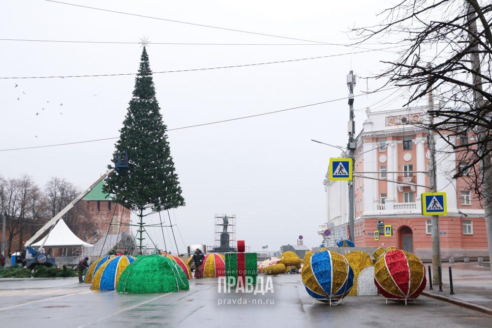 Главную новогоднюю елку установили на площади Минина