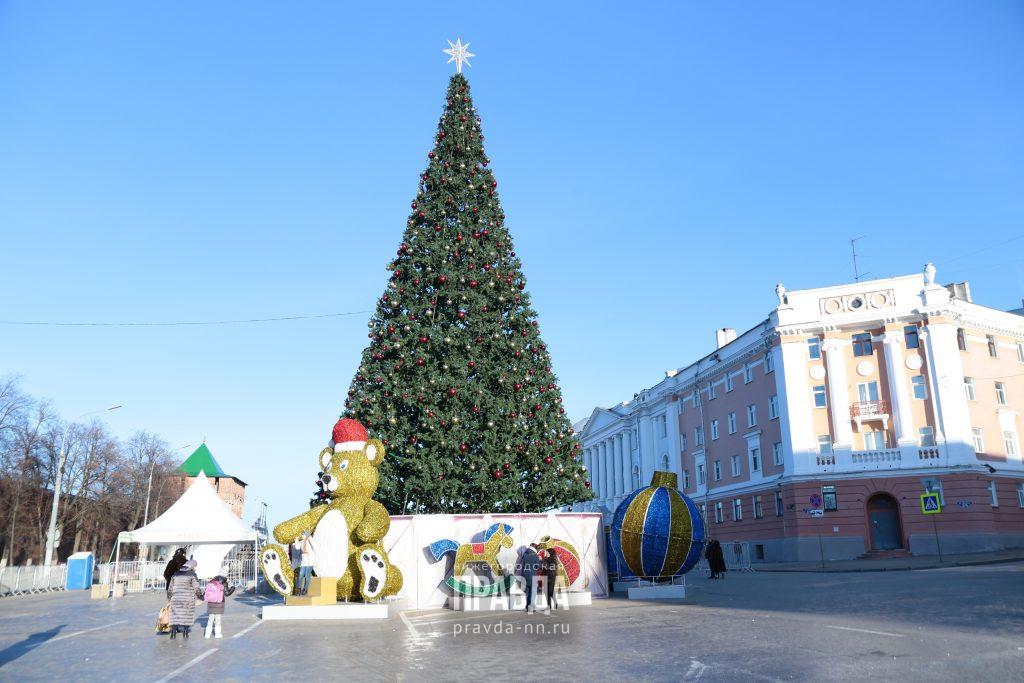 Главную новогоднюю ель снова сменят в Нижнем Новгороде
