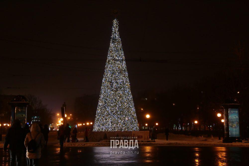 Путеводитель с QR-кодом и автобусные экскурсии: какие развлечения ждут нижегородцев на «Горьковской Ёлке»