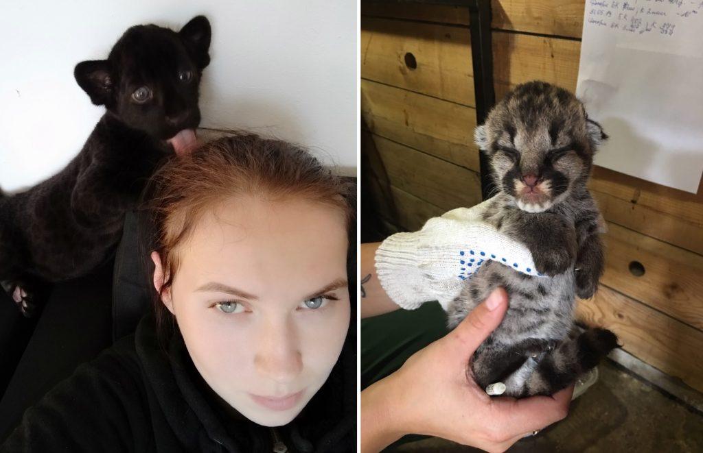 Зоопарк «Лимпопо» показал милые снимки животных за уходящий год