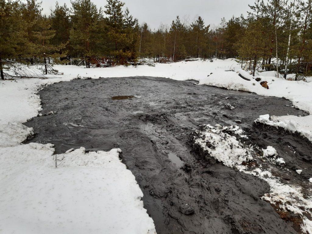 Чёрную лужу технических отходов обнаружили местные жители в лесу Дзержинска рядом с автоцентром