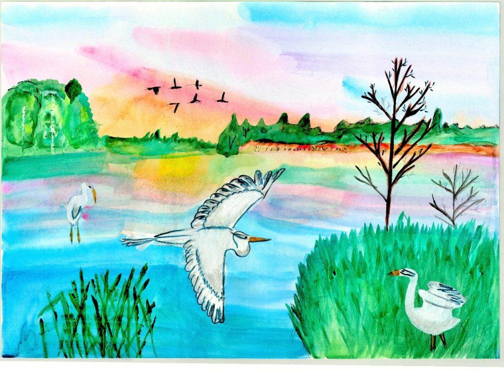 Творческий конкурс «Чистая природа» среди детей ипедагогов детских садов иначальных классов школ объявлен вНижегородской области