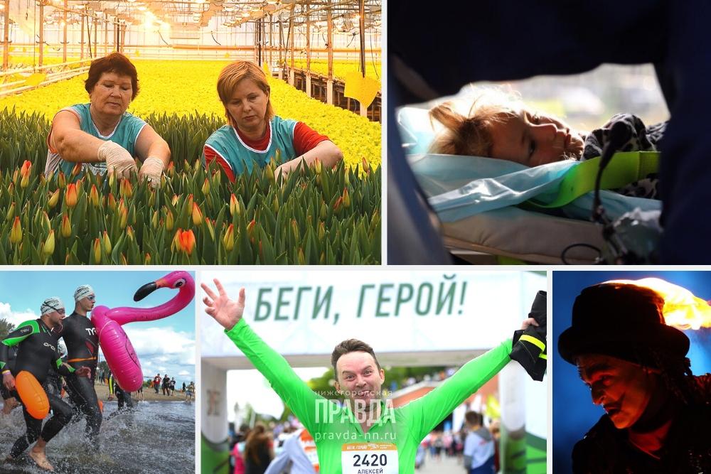 Глаза Зарины и первые тюльпаны: 10 самых ярких кадров 2019 года