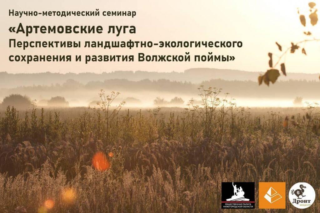 Семинар о сохранении и развитии Волжской поймы пройдет в ННГАСУ