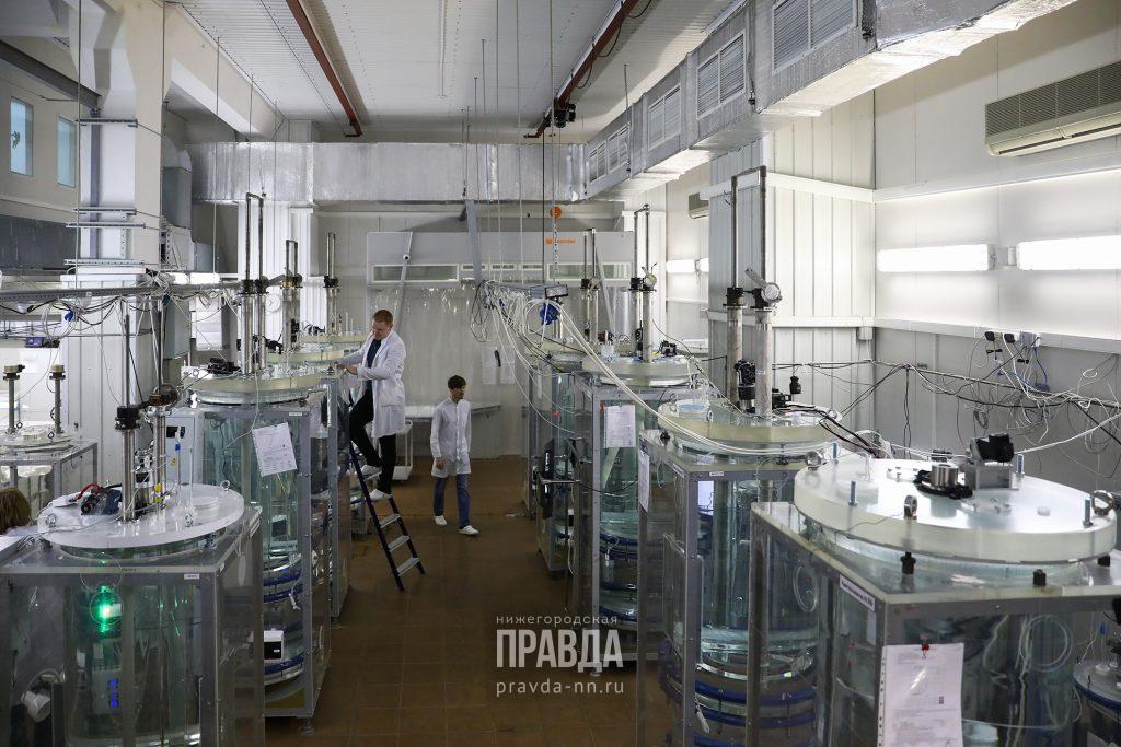 Российский научный фонд поддержал 12 проектов молодых ученых ИПФ РАН