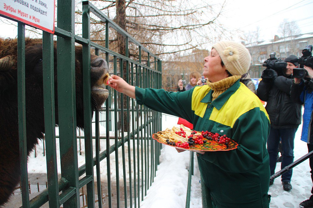 Нижегородским зоопаркам выделят субсидии на корма для животных