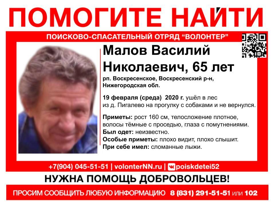 65-летний мужчина пропал в Нижегородской области во время прогулки с собаками