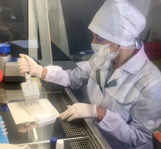 Случаев инфекционных заболеваний, связанных с укусами клещей, не зарегистрировано