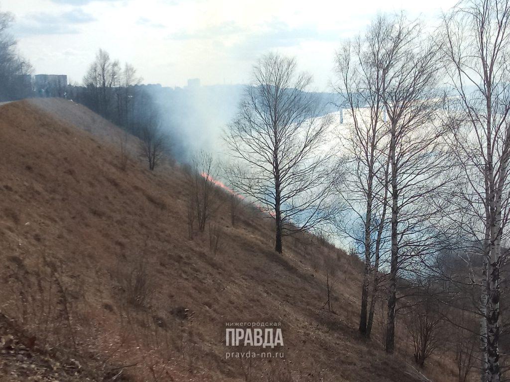 Сильный пожар произошёл в парке «Швейцария» (Обновлено)