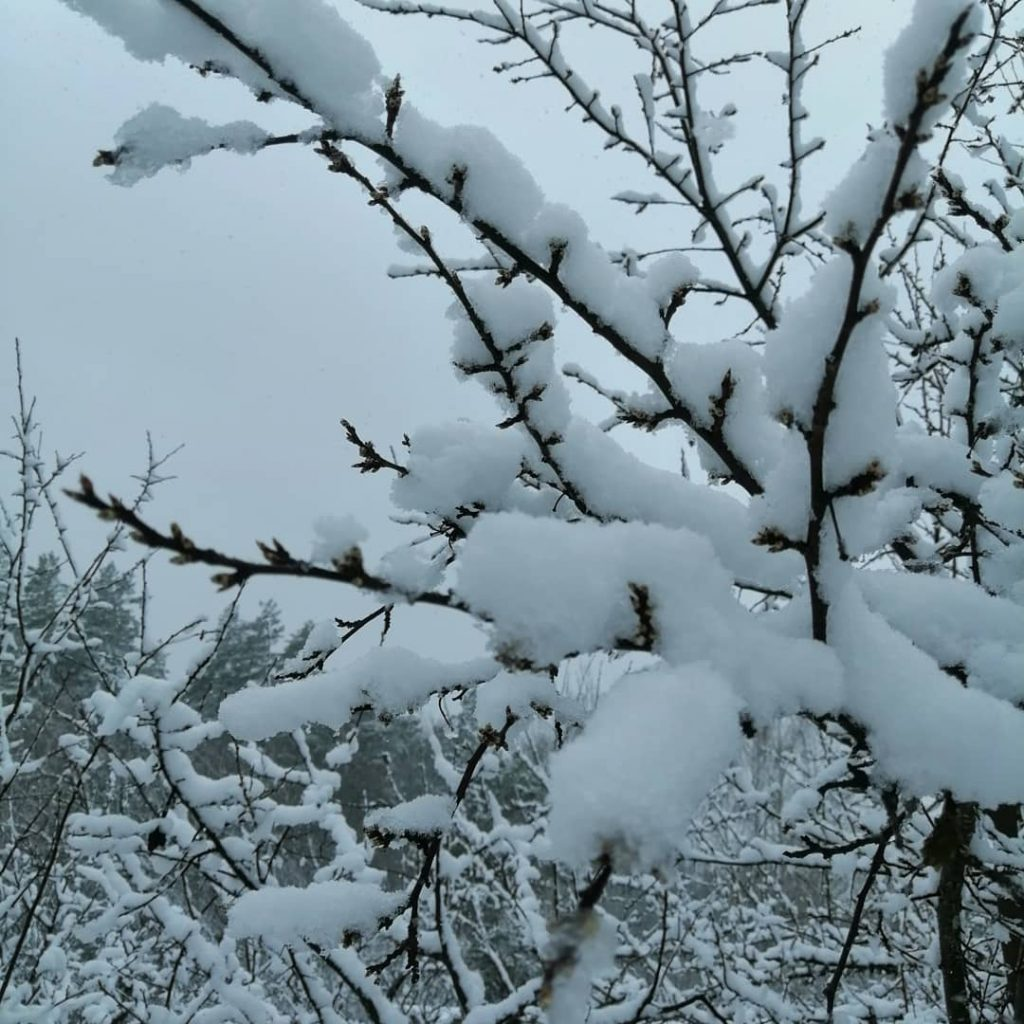 Снег обрушился на Нижегородскую область