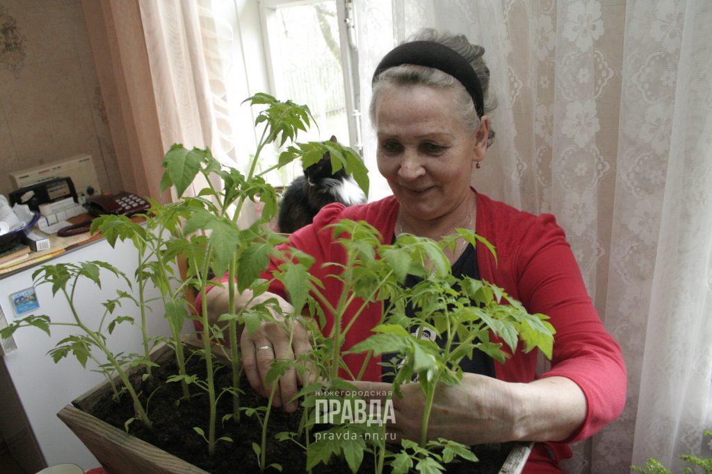 Дорогие товарищи: когда садоводы не обязаны оплачивать членские взносы и другие счета