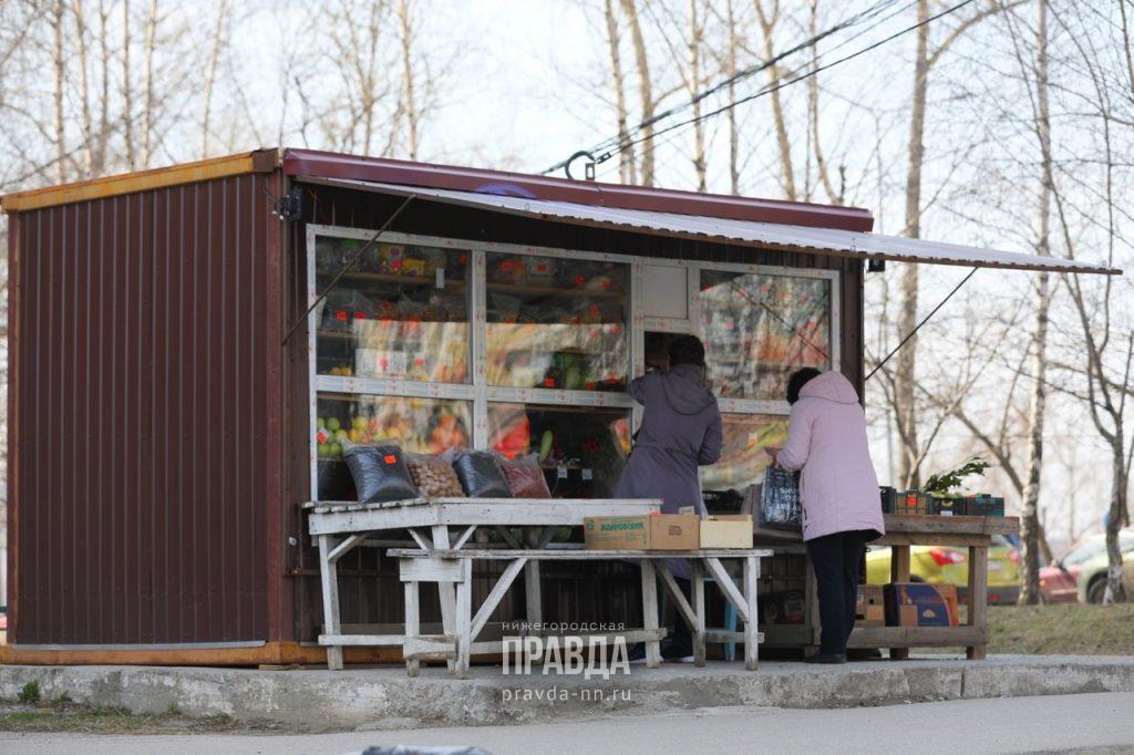 НТО ли еще будет: процедуру согласования для бизнесменов упростят в Нижнем Новгороде