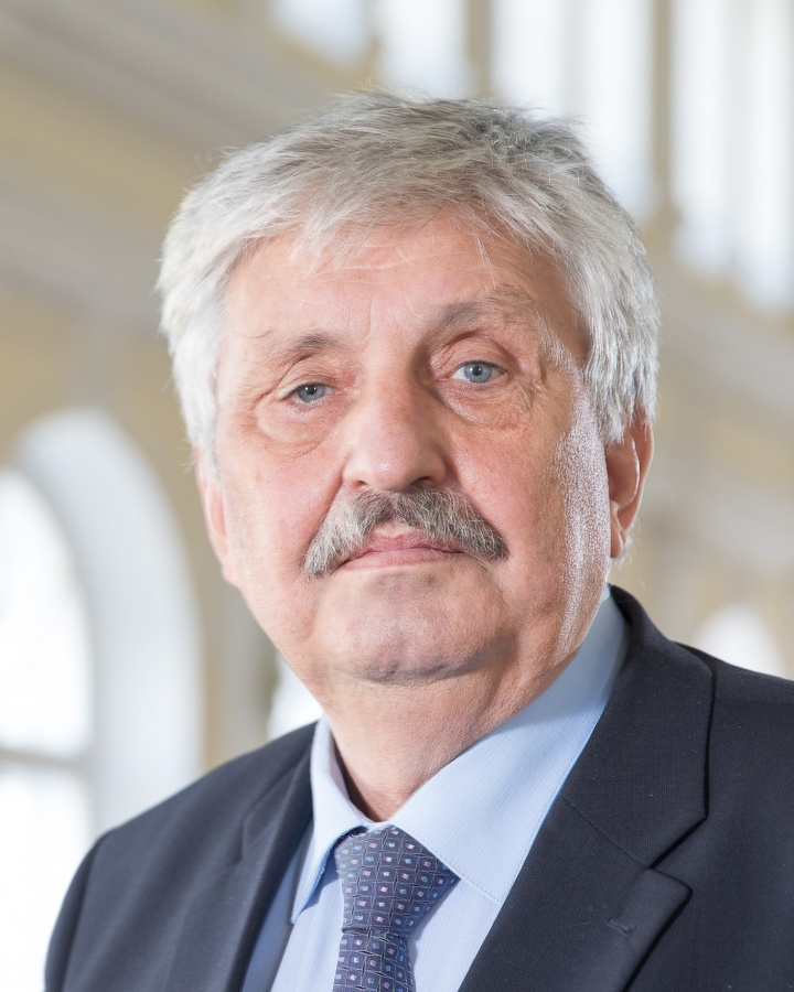 Александр Иудин, д.э.н., профессор