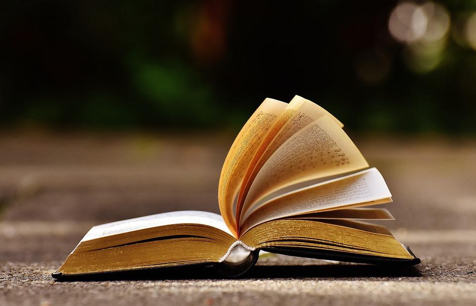 «Библионочь-2020» пройдет в Нижнем Новгороде в режиме онлайн: публикуем расписание мероприятий