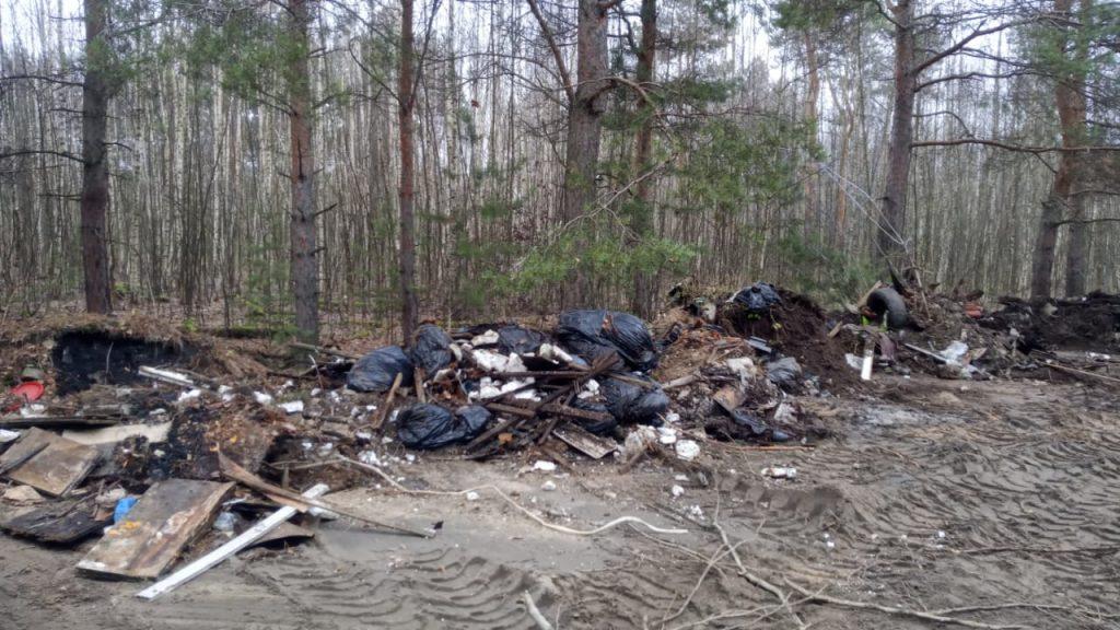 Три несанкционированные свалки ликвидированы вНижегородской области занеделю после обращения жителей всоцсетях